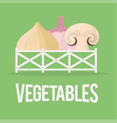 Vegetables fresh agriculture food nutrition vector