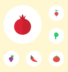 Flat icons love apple lettuce garnet and other vector