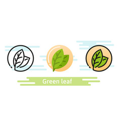 green leaf icon eco symbol vector image vector image