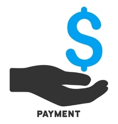 Payment icon with caption vector