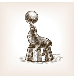 Circus seal with ball sketch vector