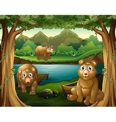 Three bears living by the river vector image vector image