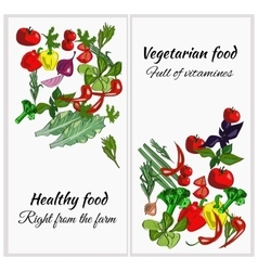 Healthy food drawn vegetables on a white vector