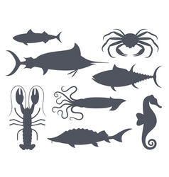 Sea life seafood fish vector