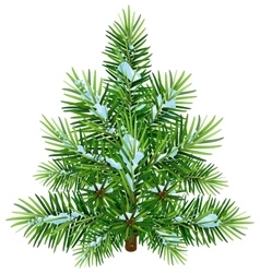 Green fluffy christmas pine tree in snow vector