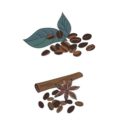 colored doodle coffee beans vector image vector image
