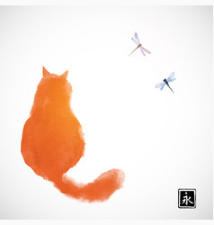 fluffy red cat watching two dragonflies vector image