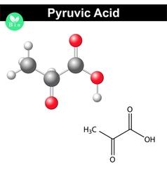 Pyruvic acid molecule vector