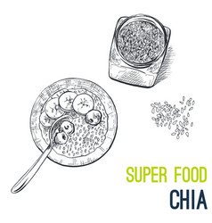 chia seeds super food hand drawn sketch vector image vector image