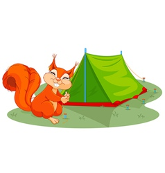 Squirrel sets tent vector
