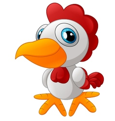 Cute rooster cartoon posing vector