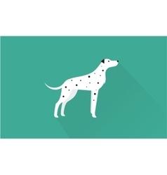 dalmatian icon vector image vector image