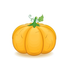 Large Ornage Pumpkin Image vector image