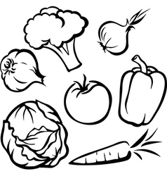 vegetable - black outline vector image vector image