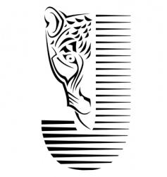 wildcat sign vector image vector image