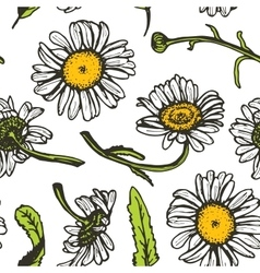 Beautiful vintage background with black daisies vector