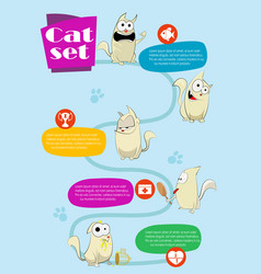 cat infographics vector image vector image