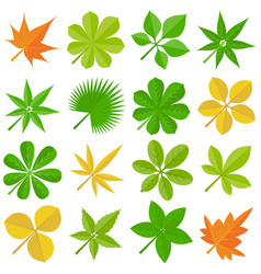 Leaves icon set 3 vector