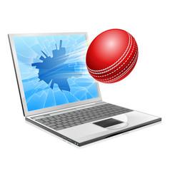 cricket laptop broken screen concept vector image