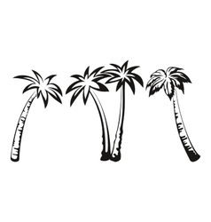 Palm Trees Black Pictograms vector image vector image