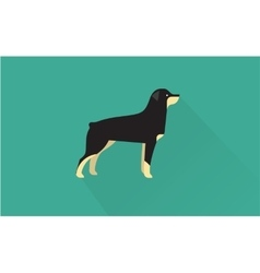 rottweiler icon vector image vector image
