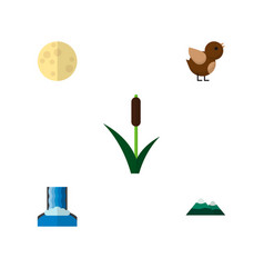 Icon flat natural set of reed moon waterfall and vector