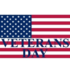 Veterans day in the us vector