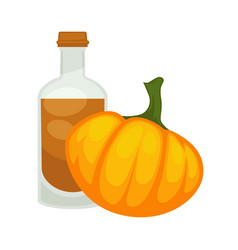 Pumpkin seed oil in bottle flat isolated vector