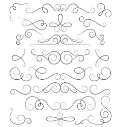 Decorative curls and swirls collection vector image