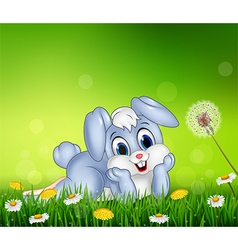 Cute little bunny on grass background vector