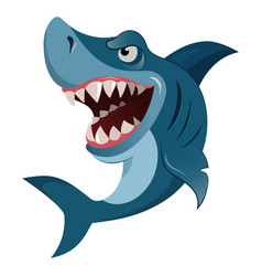 Hungry angry cartoon great white shark wiith big vector