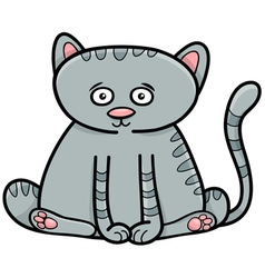 Cat or kitten animal character vector