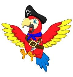 Cute parrot pirate cartoon vector image vector image
