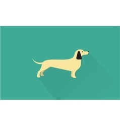 Dachshund icon vector