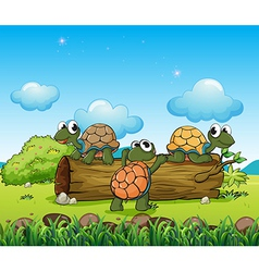 Three turtles playing with the log vector image