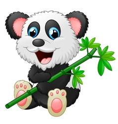 Cute panda cartoon eating bamboo vector