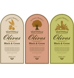 Set of labels for olives vector