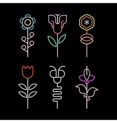 Neon flowers vector