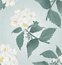 Seamless texture twig spring flower jasmine vector image vector image