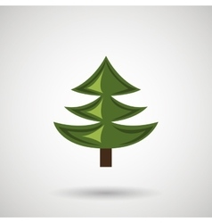 Pine tree design vector