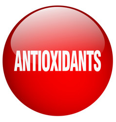 Antioxidants red round gel isolated push button vector