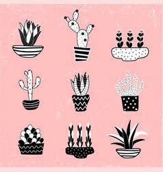 cactus 2-04 vector image