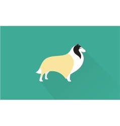collie icon vector image vector image