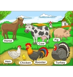 Farm animals with names cartoon educational vector image
