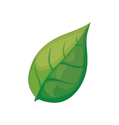 Leaf nature plant eco icon graphic vector
