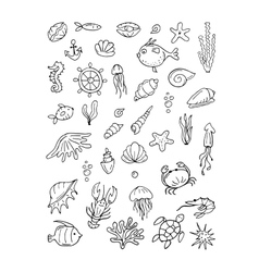 Marine life collection of sketches for your vector