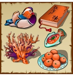 Chinese duck book tangerine and coral 5 images vector