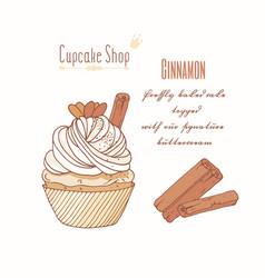hand drawn cupcake cinnamon flavor vector image