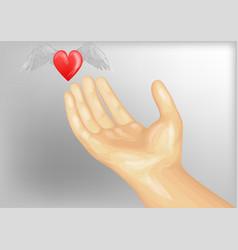 Heart as a gift vector