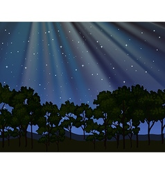 Nature scene with forest at night vector image vector image